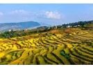 文旅产业:未来30年中国最好的投资